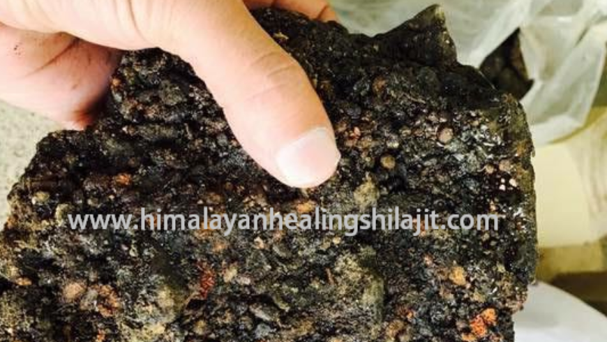 Shilajit Introduction and Its Benefits for Human Health